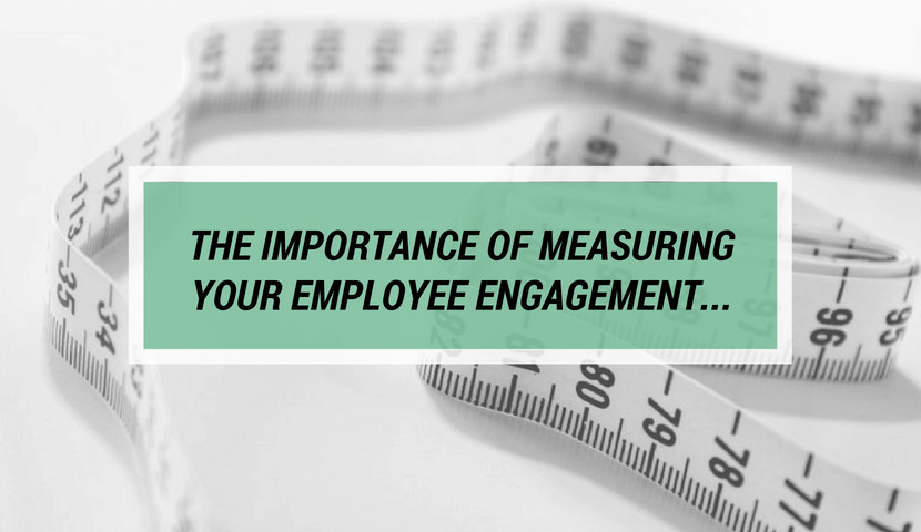 The Importance of Measuring Your Employee Engagement